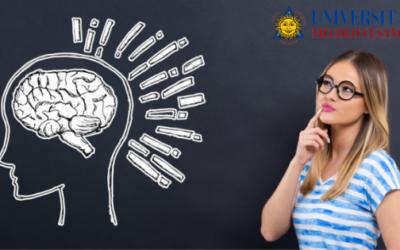 Trovare lavoro come psicologo: come fare?